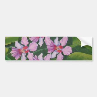 Pink Orchids Bumper Stickers