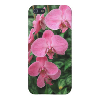 Pink Orchids Case For iPhone SE/5/5s