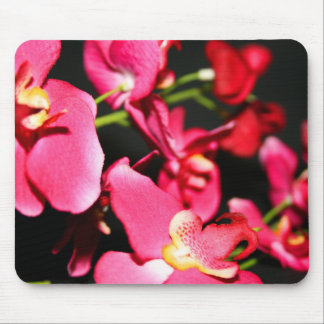Pink Orchids Mousepad