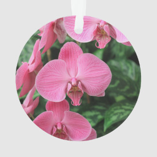 Pink Orchids Ornament