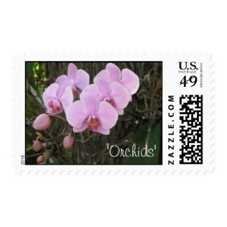 Pink Orchids Postage
