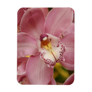 Pink Orchids  Premium Magnet Rectangular Magnets