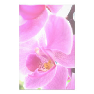 Pink Orchids Stationery