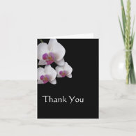 Pink Orchids Thank You Note Greeting Cards