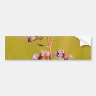 Pink Oregano Flower Bumper Sticker