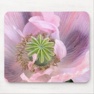 Pink Oriental Poppy Mouse Pads