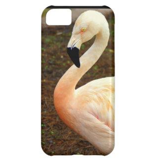 Pink Pair iPhone 5C Case