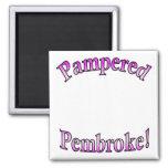 Pink Pampered Pembroke Template Magnets
