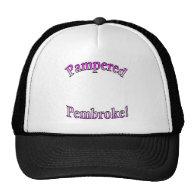 Pink Pampered Pembroke Template Mesh Hats