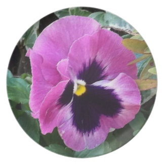 Pink Pansy Plate