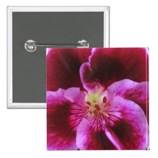Pink Pansy Square Button