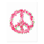 Pink Peace Flowers Postcard