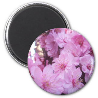 Pink Peach Blossoms Magnet