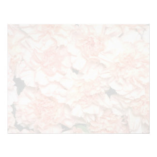Pink Peach carnations flowers Letterhead