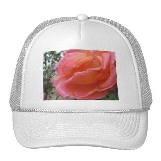 Pink Peach Rose Trucker Hat