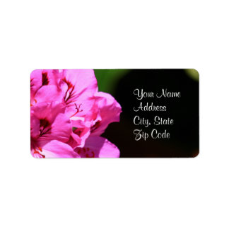 Pink Pelargonium flower Address Labels