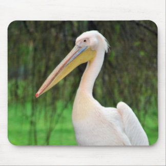 Pink Pelican bird with long beak Mouse Pad