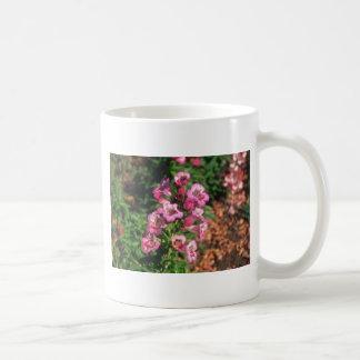 Pink Penstemon (Penstemon Gloxiniodes) flowers Coffee Mug