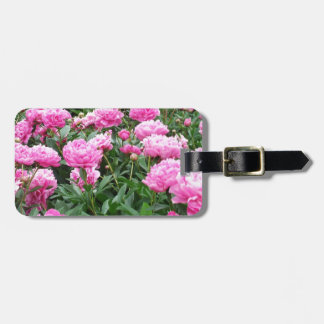 Pink Peonies in Full Bloom Tags For Bags