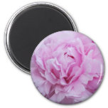 Pink Peonies / Peony 2 Inch Round Magnet