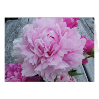 Pink Peonies / Peony Notecard Stationery Note Card