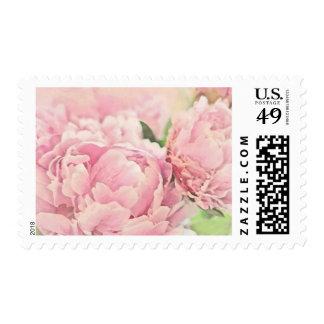 Pink Peonies Postage Stamp
