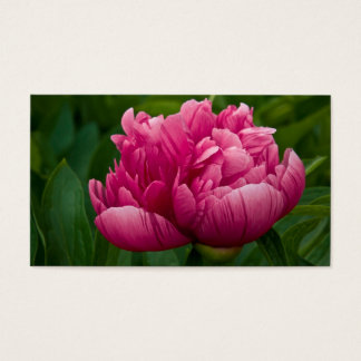 Pink Peony 2011 Pocket Calendar (US) Business Card