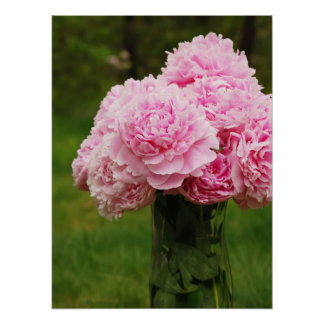 Pink Peony Bouquet Poster