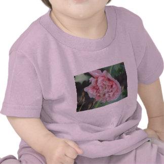 Pink Peony Flower Baby T-Shirt