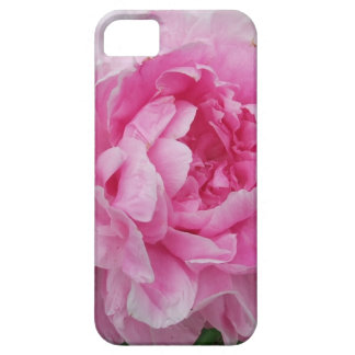 Pink Peony Flower iPhone 5 Cases