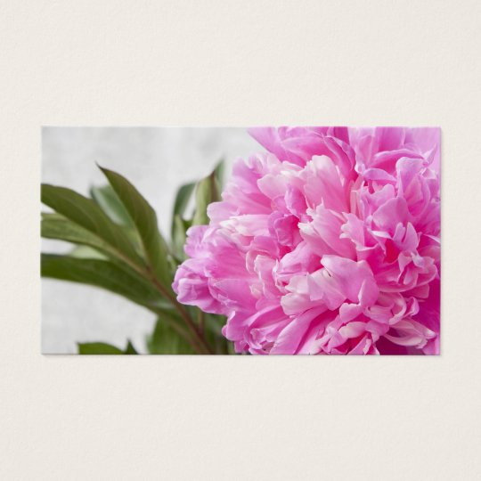 Pink peony flower floral business or profile card