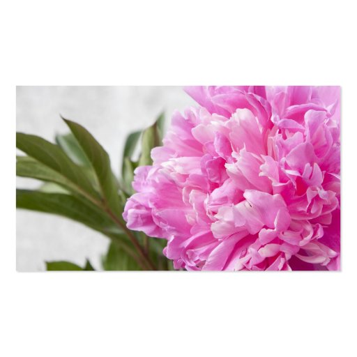 Pink peony flower floral business or profile card business cards