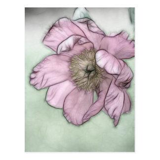 Pink Peony Flower Sketch Postcard