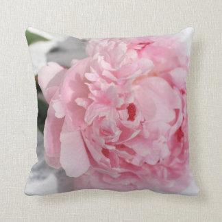Pink peony, garden pillow