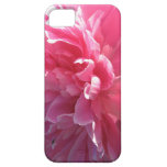 Pink Peony iPhone 5 Covers