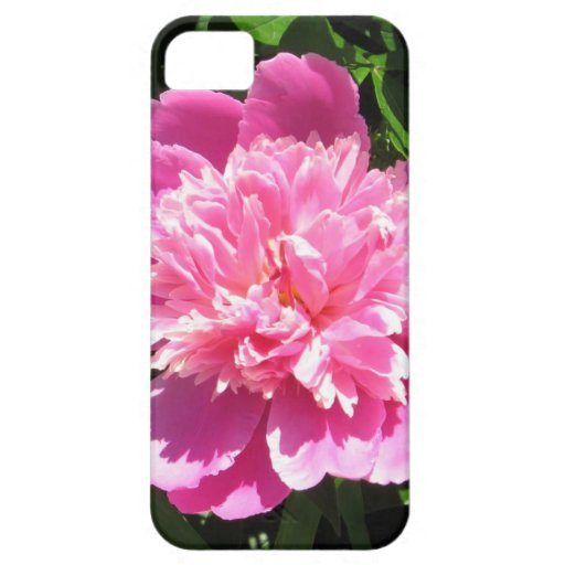 Pink Peony iPhone SE/5/5s Case