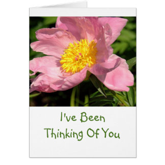 """PINK PEONY/""""I'VE BEEN THINKING OF YOU""""/PHOTOG. CARD"""