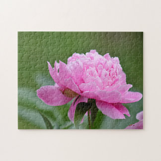 Pink peony jigsaw puzzle