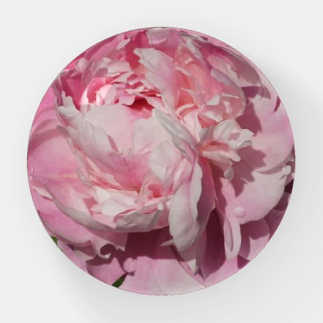 Pink Peony Paperweight