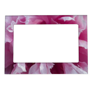 Pink Peony Picture Frame Magnetic Picture Frames
