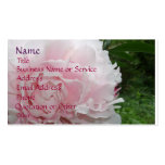 Pink Peony Profile/Business Card