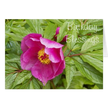 northwestphotos Pink Peony Religious Birthday Card