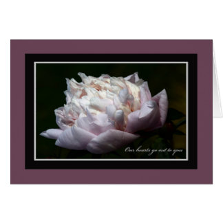 Pink Peony Sympathy Note Card