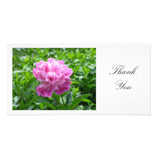 Pink Peony - Thank You Card