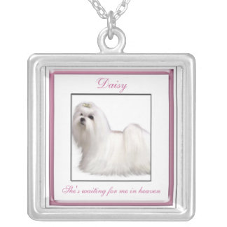Pink Pet Memorial Necklace
