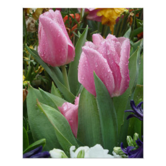 Pink Petal Tulips Nestled In The Leaves 2 Poster