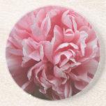 Pink Petals Coaster