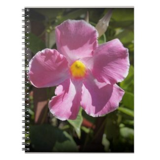 Pink Petals Spiral Notebooks