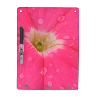 Pink Petunia Dry Erase Board With Key Holder