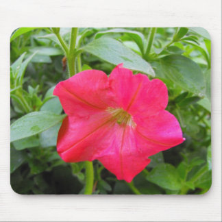 Pink Petunia Flower Mouse Pad